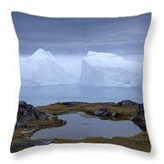 110613p170 Throw Pillow