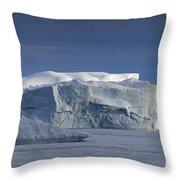 110613p174 Throw Pillow