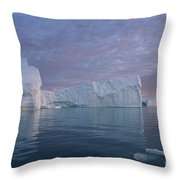 110613p177 Throw Pillow