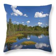 110613p186 Throw Pillow