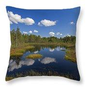 110613p187 Throw Pillow