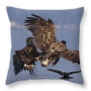 110613p229 Throw Pillow