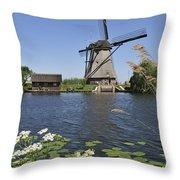110714p051 Throw Pillow