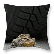 110714p108 Throw Pillow