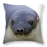 110714p130 Throw Pillow