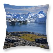 110714p241 Throw Pillow