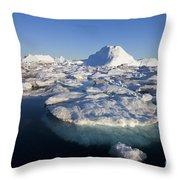 110714p242 Throw Pillow