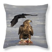 110714p311 Throw Pillow