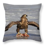 110714p312 Throw Pillow