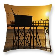 110922p030 Throw Pillow