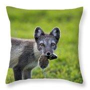 111130p048 Throw Pillow