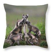 111130p061 Throw Pillow