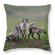 111130p062 Throw Pillow