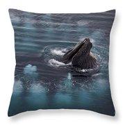 111130p126 Throw Pillow
