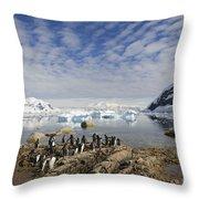 111130p132 Throw Pillow