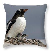 111130p140 Throw Pillow