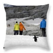 111130p153 Throw Pillow