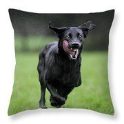 111130p196 Throw Pillow