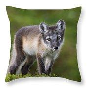 111216p021 Throw Pillow