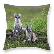111216p022 Throw Pillow