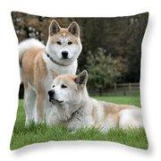 111216p239 Throw Pillow