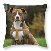 111216p247 Throw Pillow