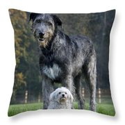 111216p251 Throw Pillow