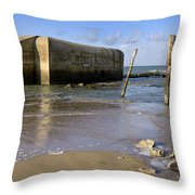111230p037 Throw Pillow