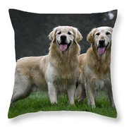 111230p058 Throw Pillow