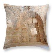Gladiator Prison Throw Pillow