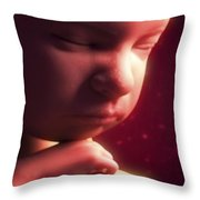 Developing Fetus Throw Pillow