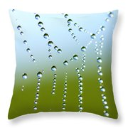 Dew On Spiderweb  Throw Pillow