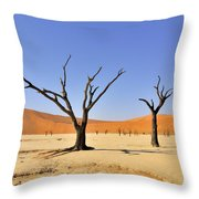120118p016 Throw Pillow