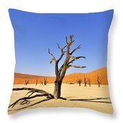 120118p018 Throw Pillow