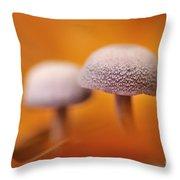 120118p035 Throw Pillow