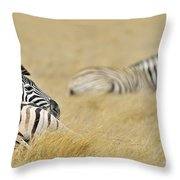 120118p096 Throw Pillow
