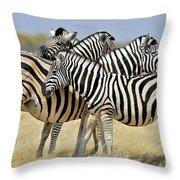 120118p097 Throw Pillow
