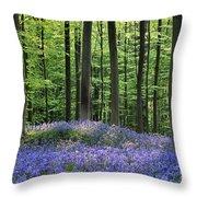 120206p191 Throw Pillow