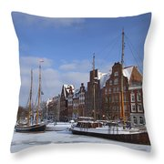 120206p263 Throw Pillow
