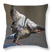 120223p130 Throw Pillow