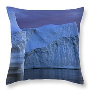 120223p181 Throw Pillow