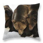 120223p304 Throw Pillow