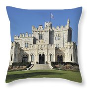 120401p164 Throw Pillow