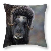 120425p337 Throw Pillow