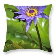 120520p014 Throw Pillow