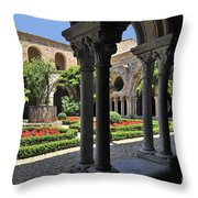 120520p105 Throw Pillow