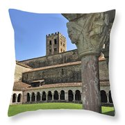 120520p131 Throw Pillow