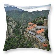 120520p136 Throw Pillow