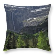 120520p190 Throw Pillow