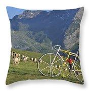 120520p230 Throw Pillow